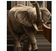 Elefant - Fell 16022